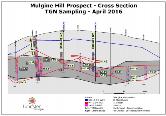 Figure 1: Cross section showing Tungsten Mining sampling of Minefields and ANZECO drilling.