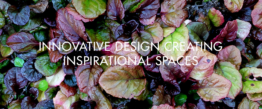 Homepage versionS1.jpg