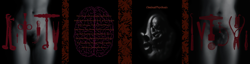 Oneiroid Psychosis,  Stillbirth . Gatefold CD booklet . 1995. Sculpted clay fetus and womb, Photography, Pen and ink, Found medical instrument illustrations. Released by Decibel Records.