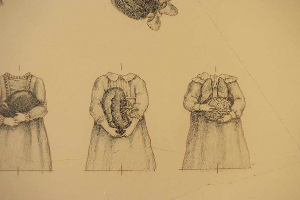 The lithography stone drawings for the dresses cooresponding to Yellow Bile (spleen) and Phlegm (brain and lungs).