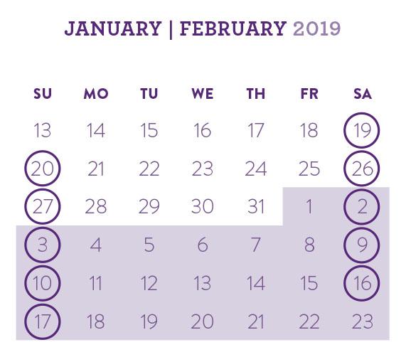 mole rat calendar website.jpg