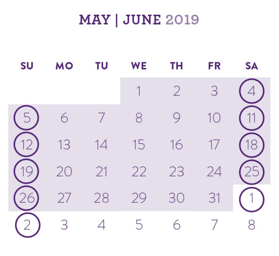 diary web calendar.jpg
