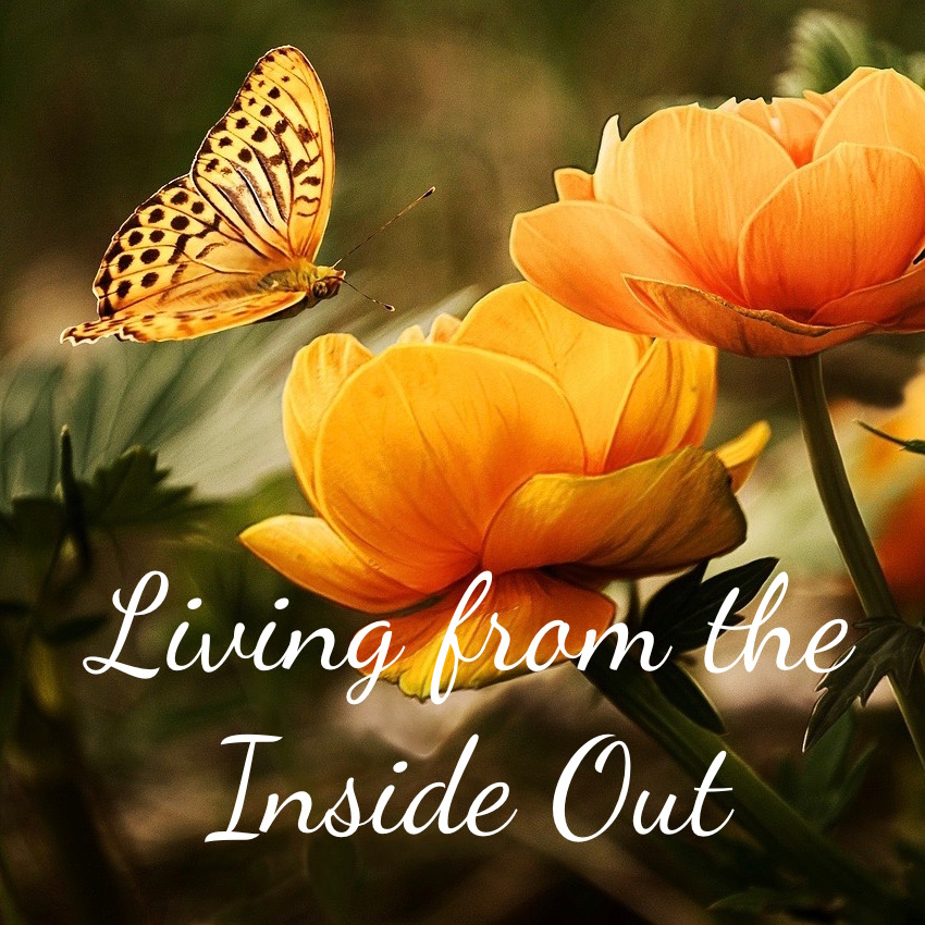 "Joined to Jesus, Part 1 of ""Living from the Inside Out""; Spiritual Circumcision, Part 2 of ""Living from the Inside Out"""
