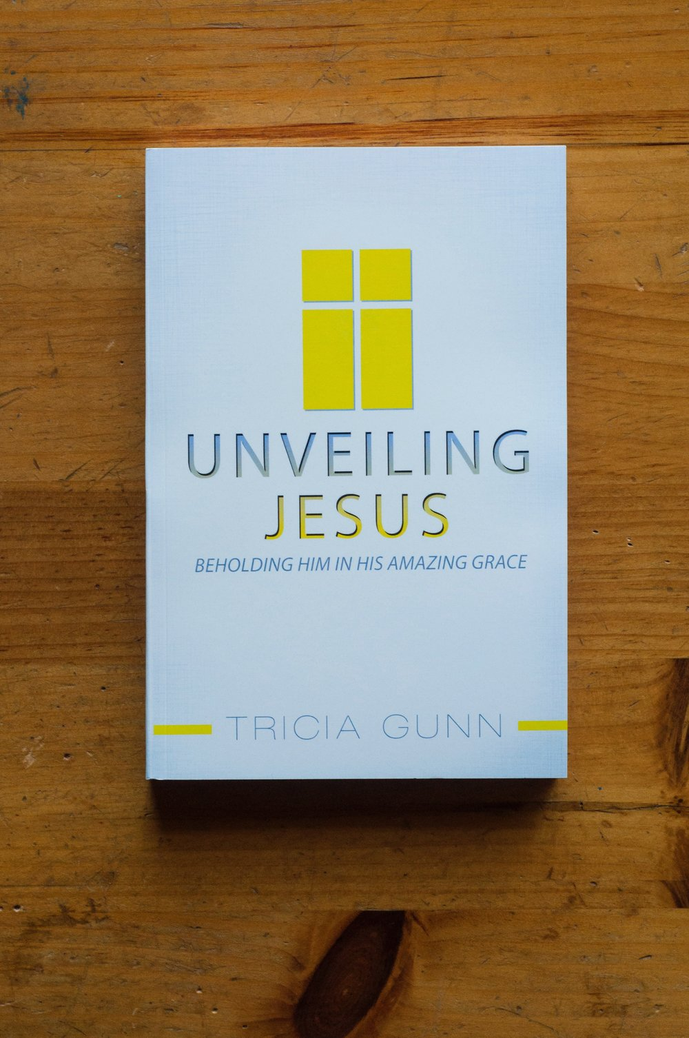 Unveiling Jesus  by Tricia Gunn