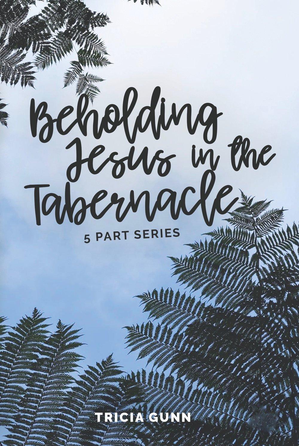 Beholding-Jesus-DVD-01, blank.jpg