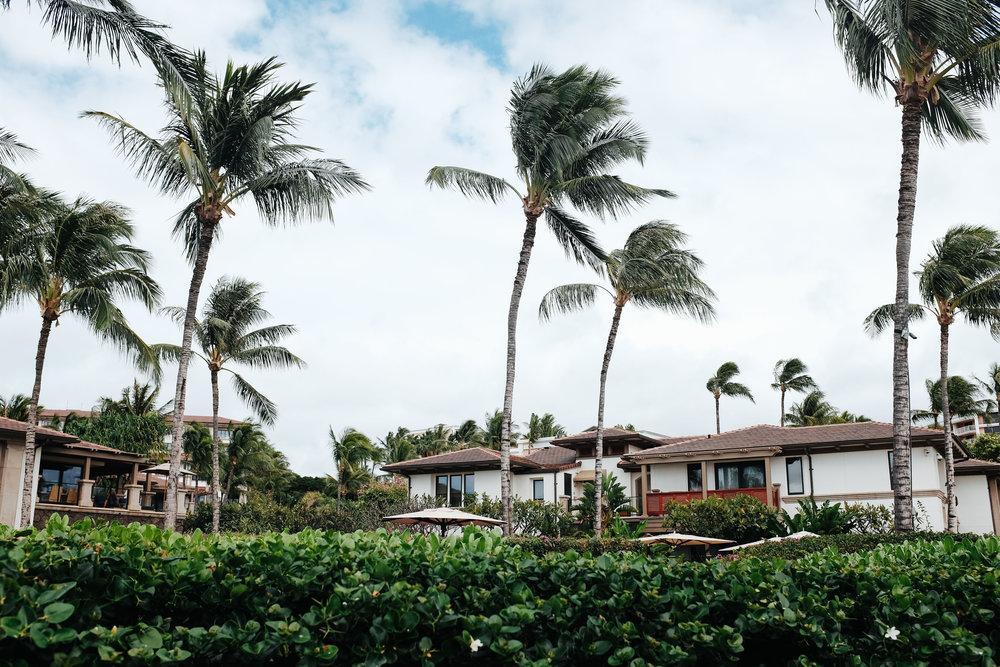 Hawaii2-7.jpg