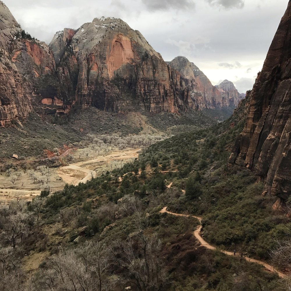 Zion from Angels Landing. One of the most scenic hikes in the Southwest.