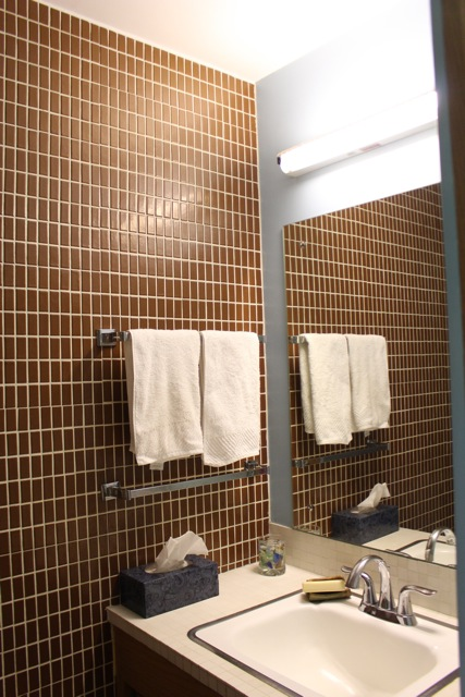LL BATHROOM TILE.jpg