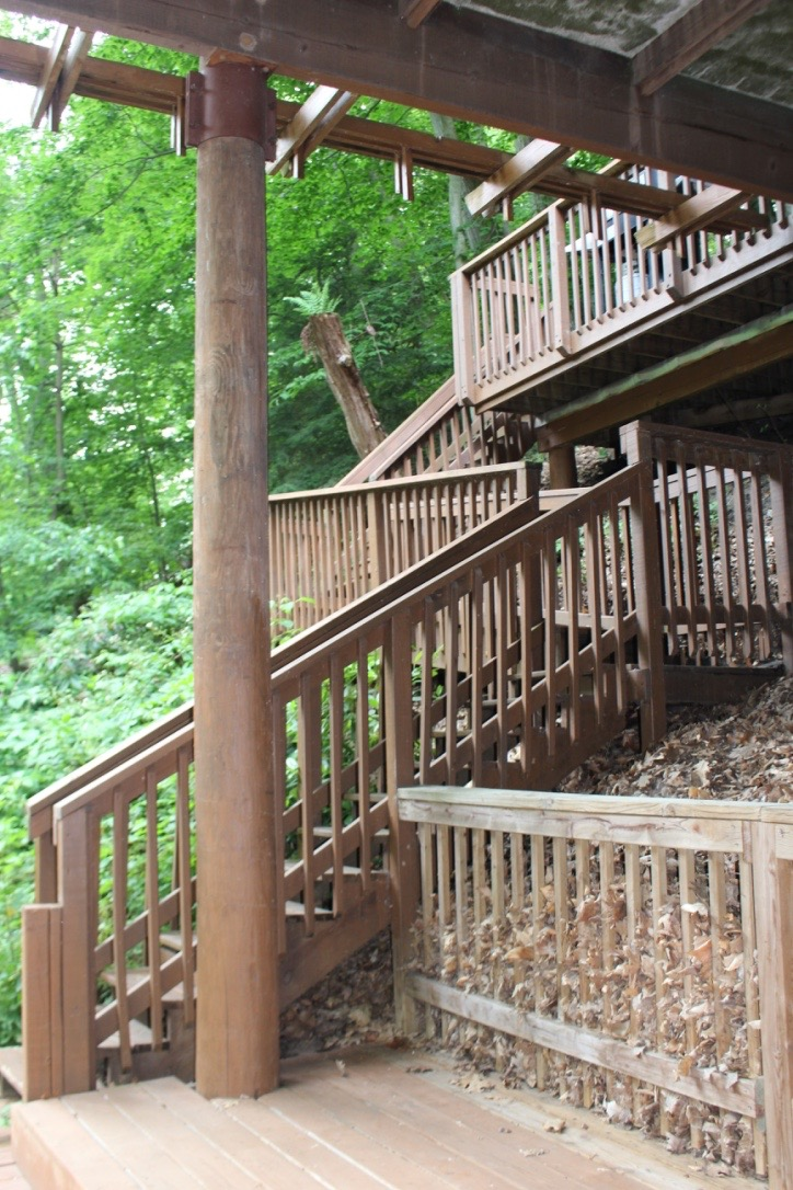 These are the stairs you use to climb the tree house.