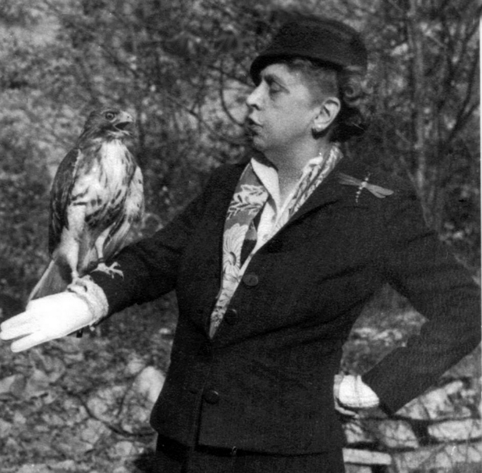 'Paying tribute to Mrs. C. N. Edge', Rosalie Edge with red-tailed hawk