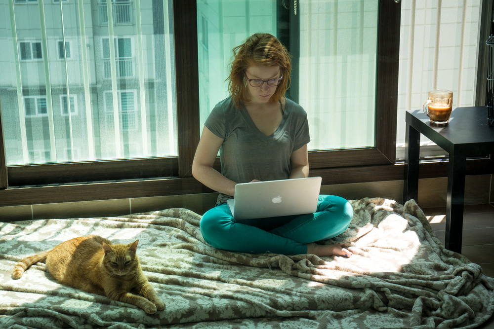 in my element - Tea, cats, travel, and tech.