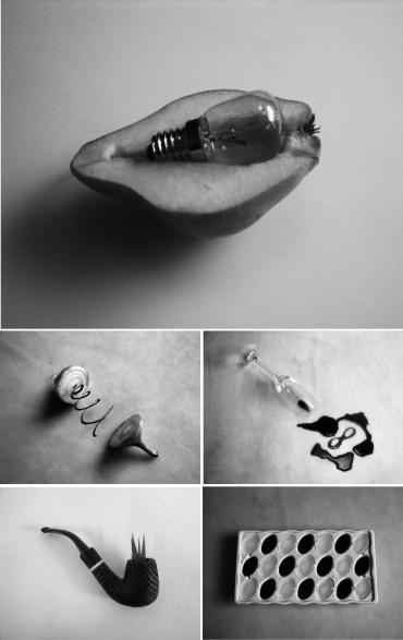 Reveries: Metaphors of Natural Philosophers , 2010.