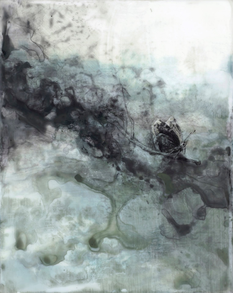 Mourning Cloak , 2015. Encaustic and mixed media on panel. 10 x 8 inches. Private collection.