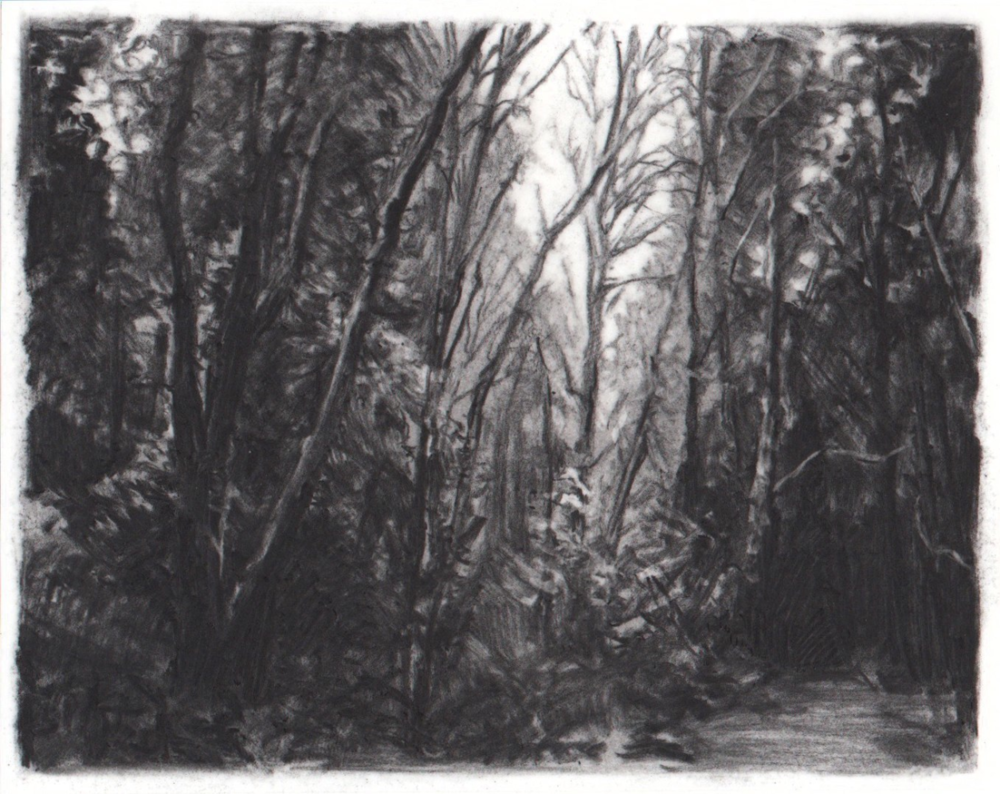 Coming Night,  2013. Charcoal on mylar. 3.5 x 4.5 inches.   Available