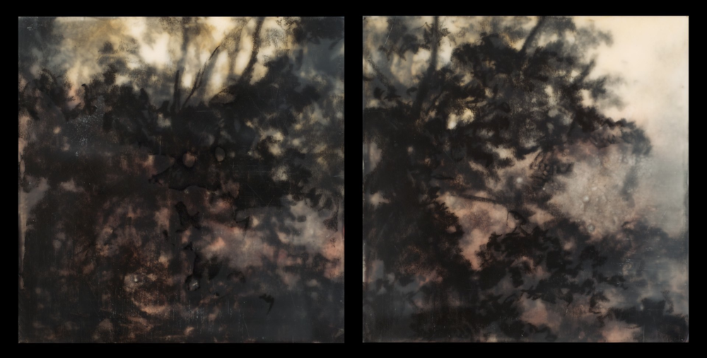 Ether Study , 2013. Encaustic, pigment, and charcoal on panel. 5 x 10 inches (diptych). Private collection.