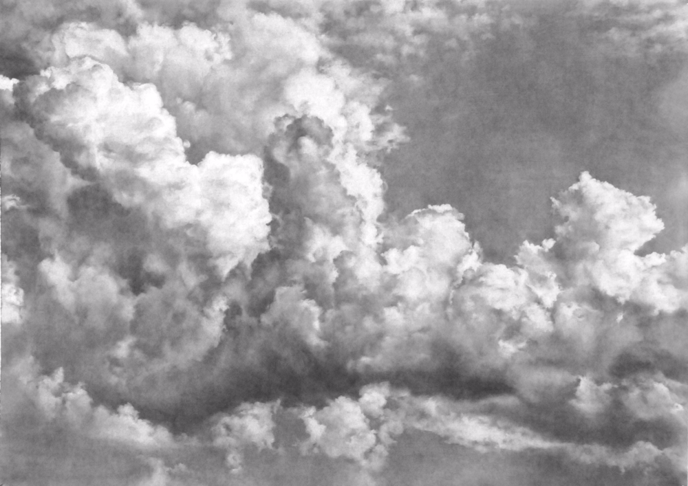 Firmament , 2011. Charcoal on paper. 30 x 42 inches. Private collection.