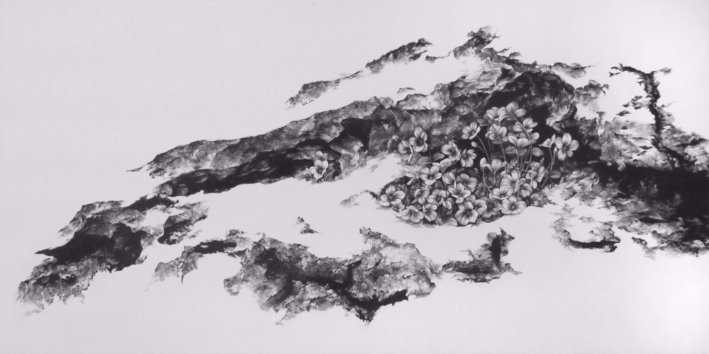 The Fertile Rock I , 2011. Graphite on clayboard. 12 x 24 inches.   Available