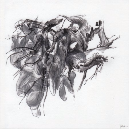 Observations XI,  2010. Ink and charcoal on mylar. 5 x 5 inches. Private collection.