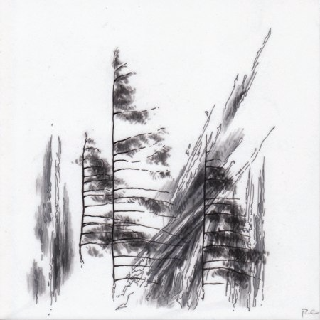 Observations VIII,  2010. Ink and charcoal on mylar. 5 x 5 inches. Private collection.
