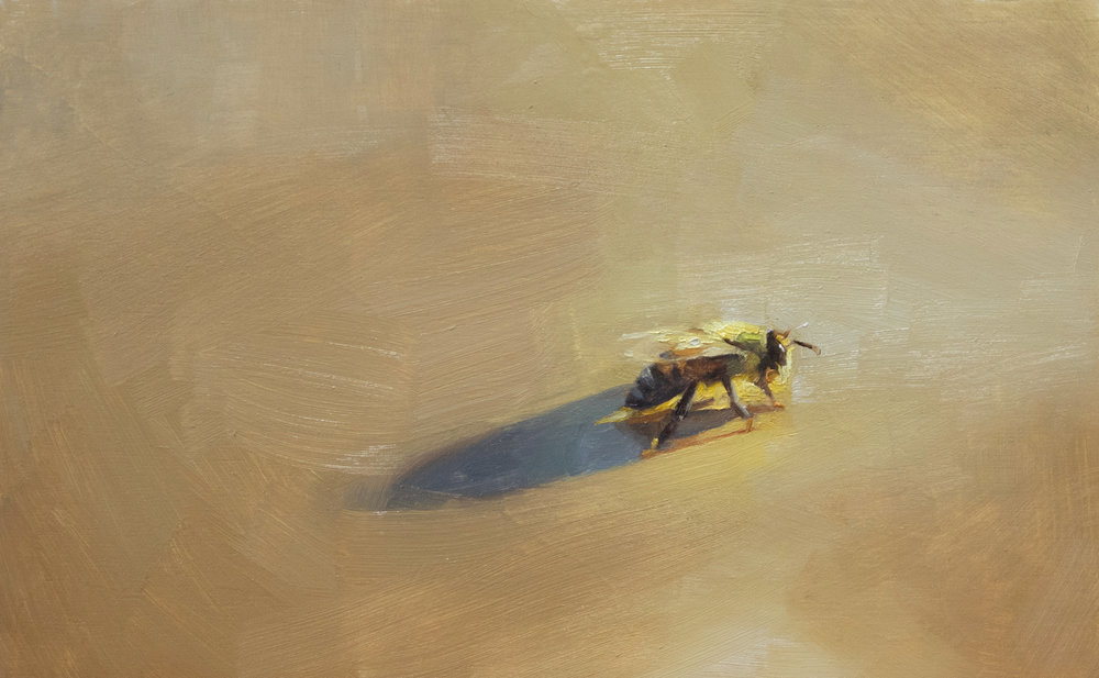 Golden Bee , 2018. Oil on panel. 4 x 6 inches. Private collection.