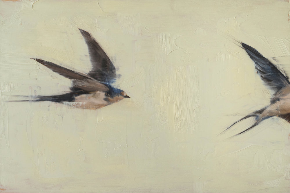 Swallows , 2016. Oil on panel. 8 x 12 inches. Private collection.