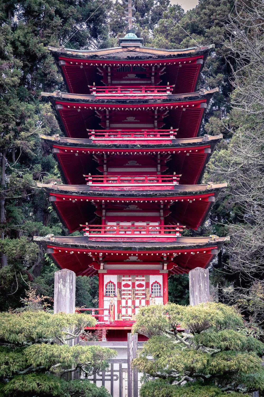 SF Tea Garden Pagoda