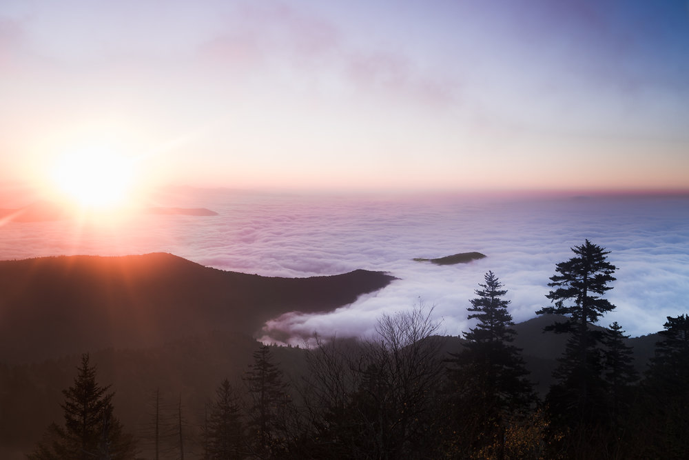 Clingman's Dome | Sunrise