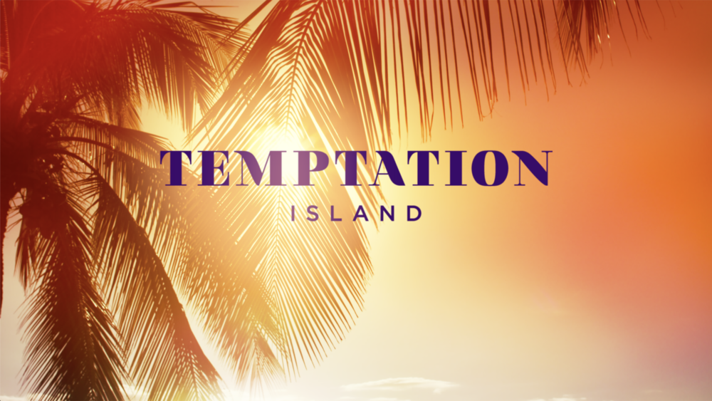 TEMPTATION ISLAND , USA Network