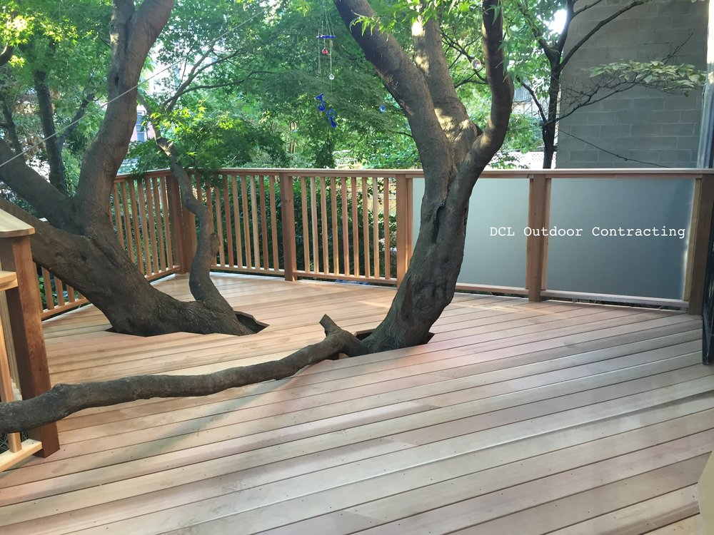 Fort Greene Tree House Deck4.JPG