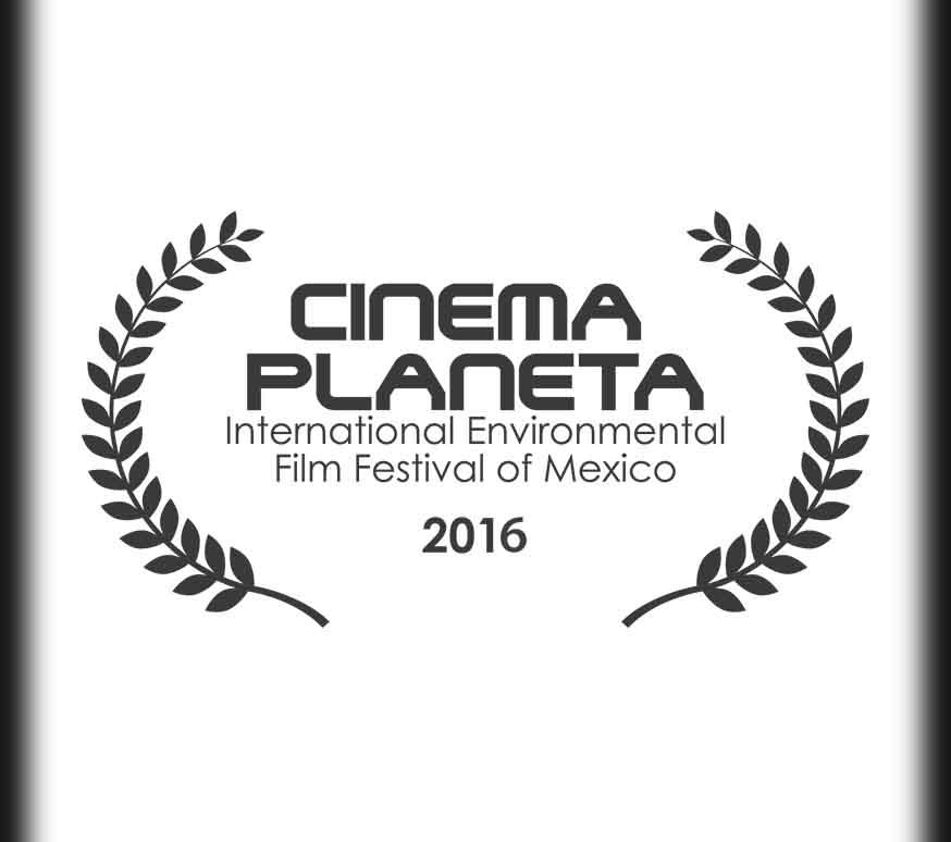 CinemaP.jpg