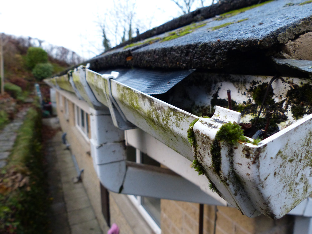 Gutters needing TLC -