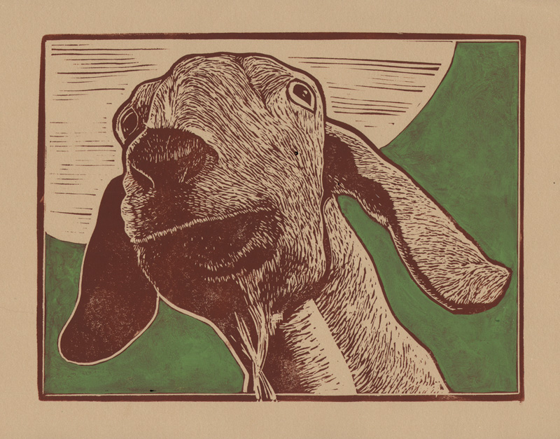 print_Goat.jpg