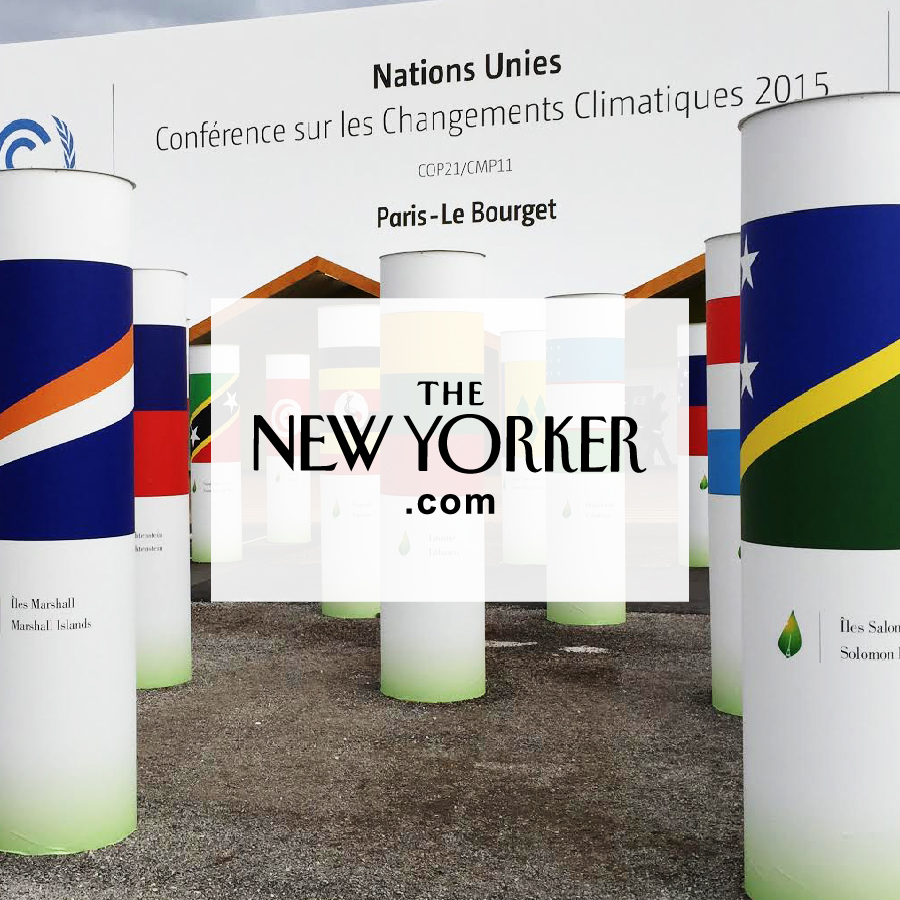 Signal and Noise at the Paris Climate Summit