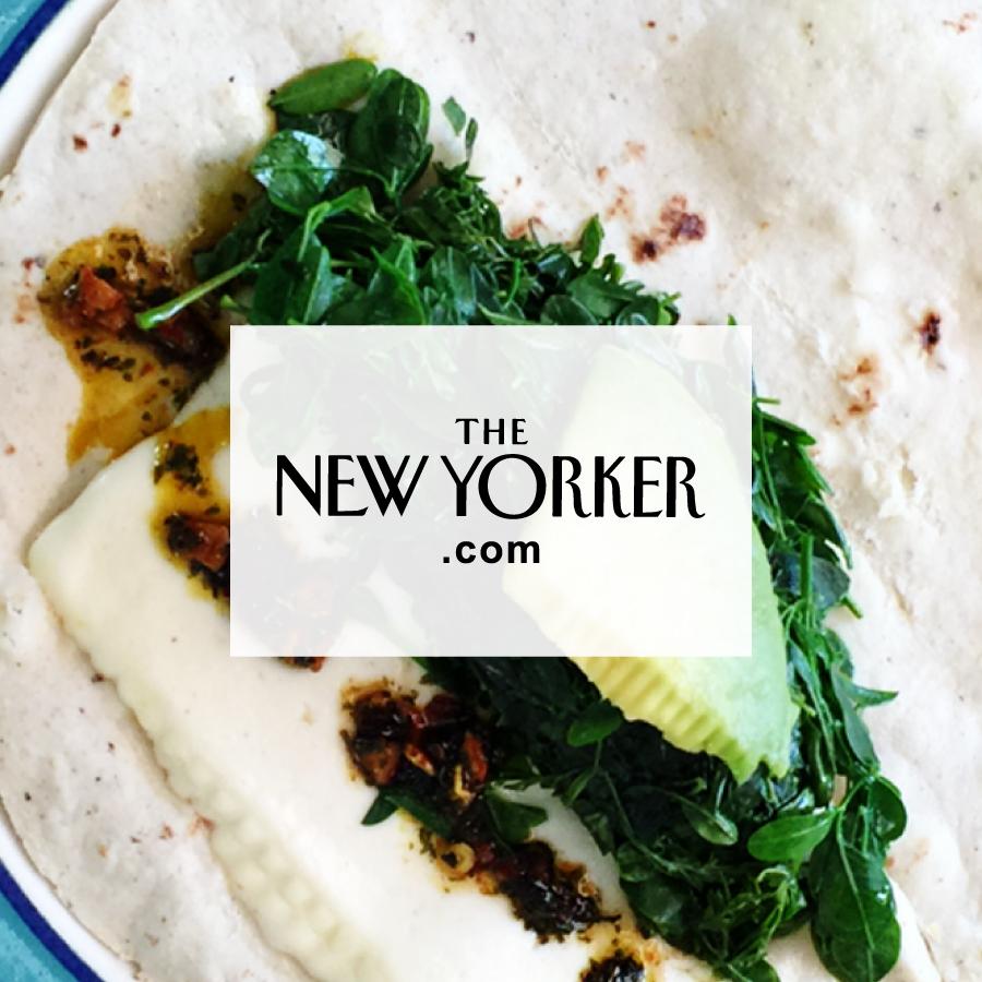 Meet Moringa, the Climate-Resistant Superfood