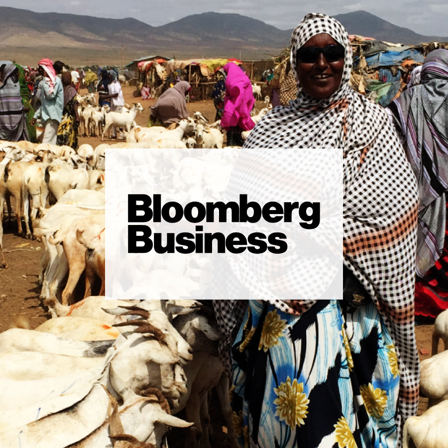 The Ethiopian Guide to Famine Prevention