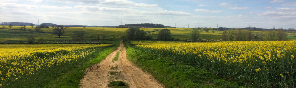 Cycling and Walking -