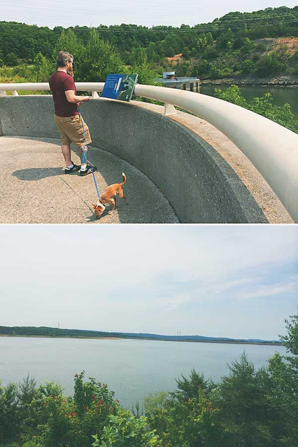 We stopped in Chattanooga to let the dogs walk around