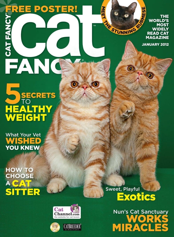 catfancy.jpg