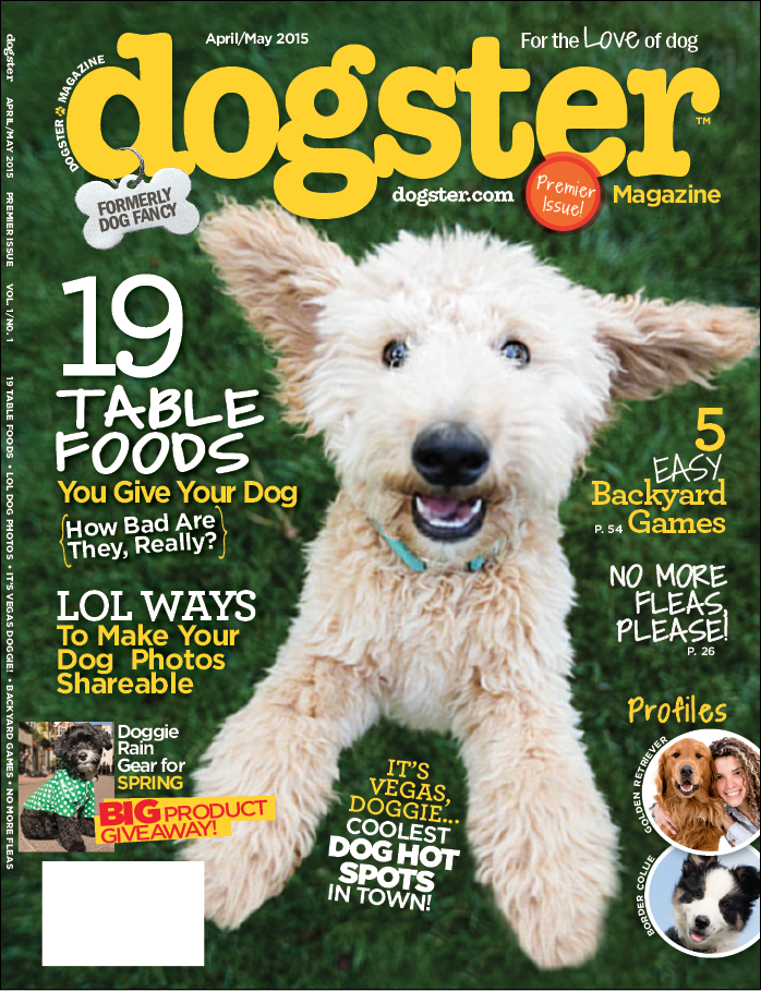 Dogster-cover.png