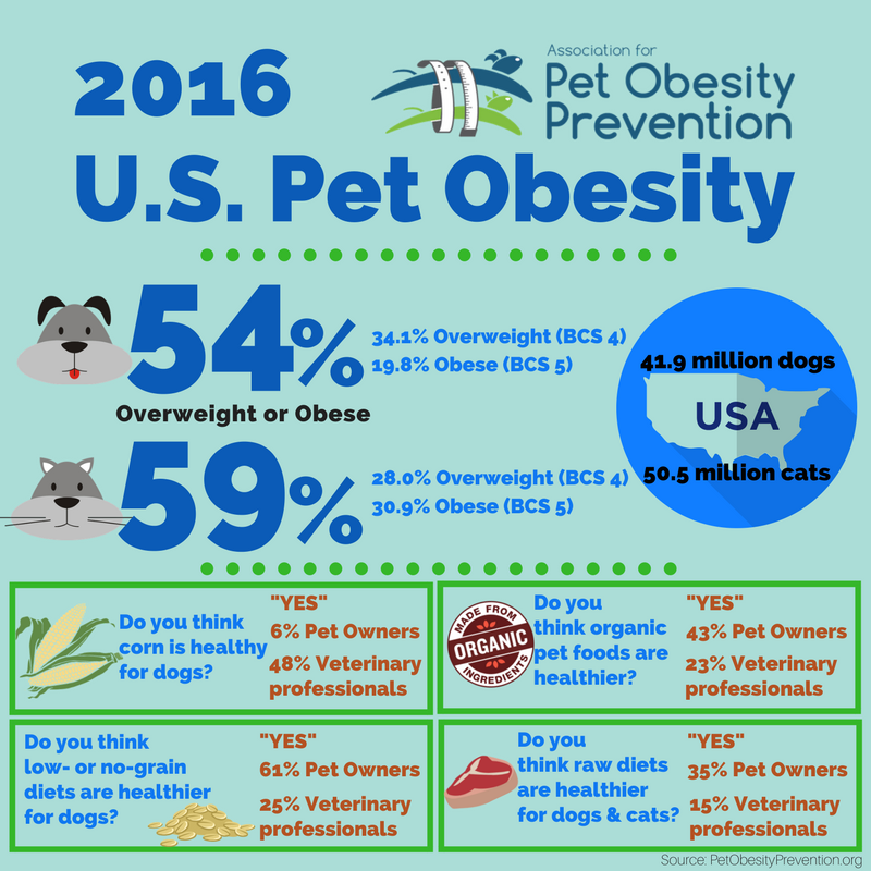 2016 U.S. Pet Obesity Infographic