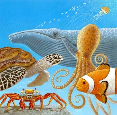 turtle octopus.jpg