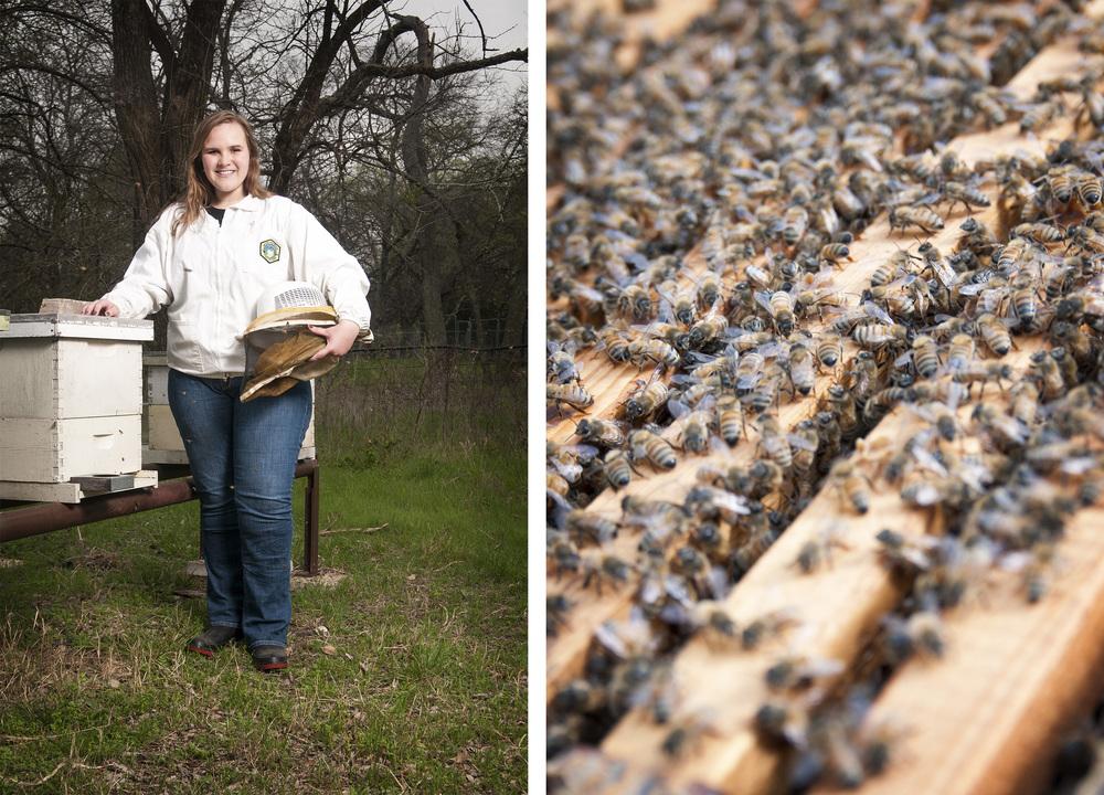 Caroline Adams, Beekeeper