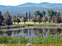 06-likely-place-california-alturas-rv-park-campground-camping-golf-resort-restaurant-modoc-shasta-cascade.jpg