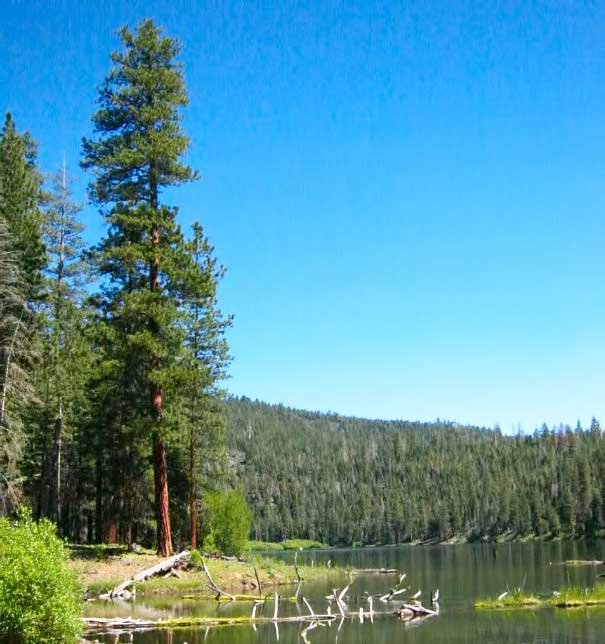 08-likely-place-fishing-alturas-rv-park-campground-camping-golf-resort-restaurant-modoc-shasta-cascade.jpg