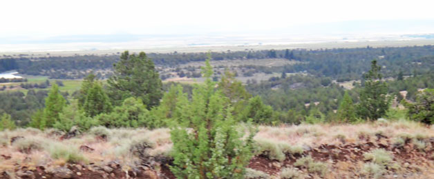 Pit River Valley, Modoc NWR & Dorris Reservoir in background