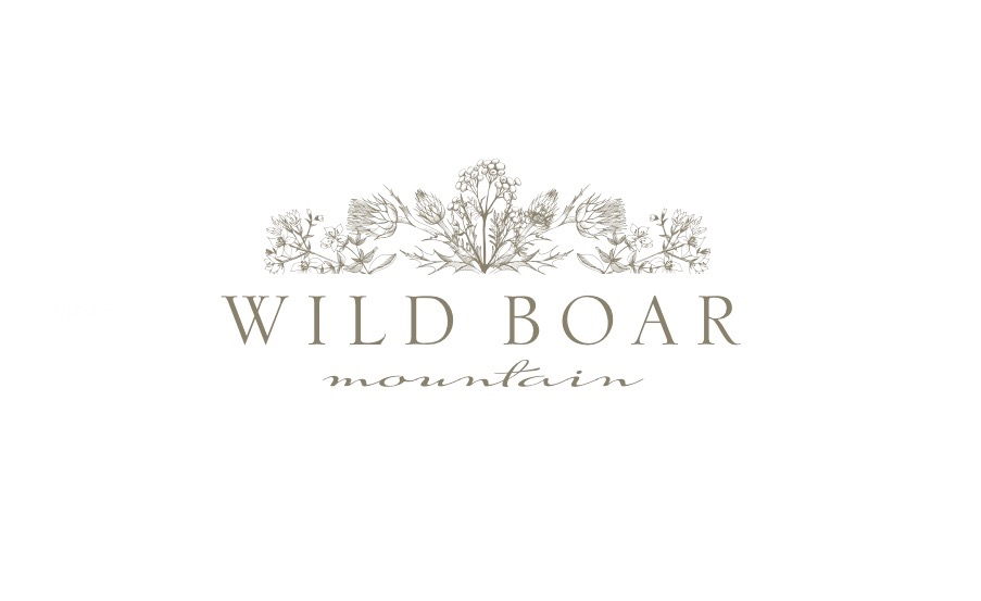 Wild Boar Mountain Logo