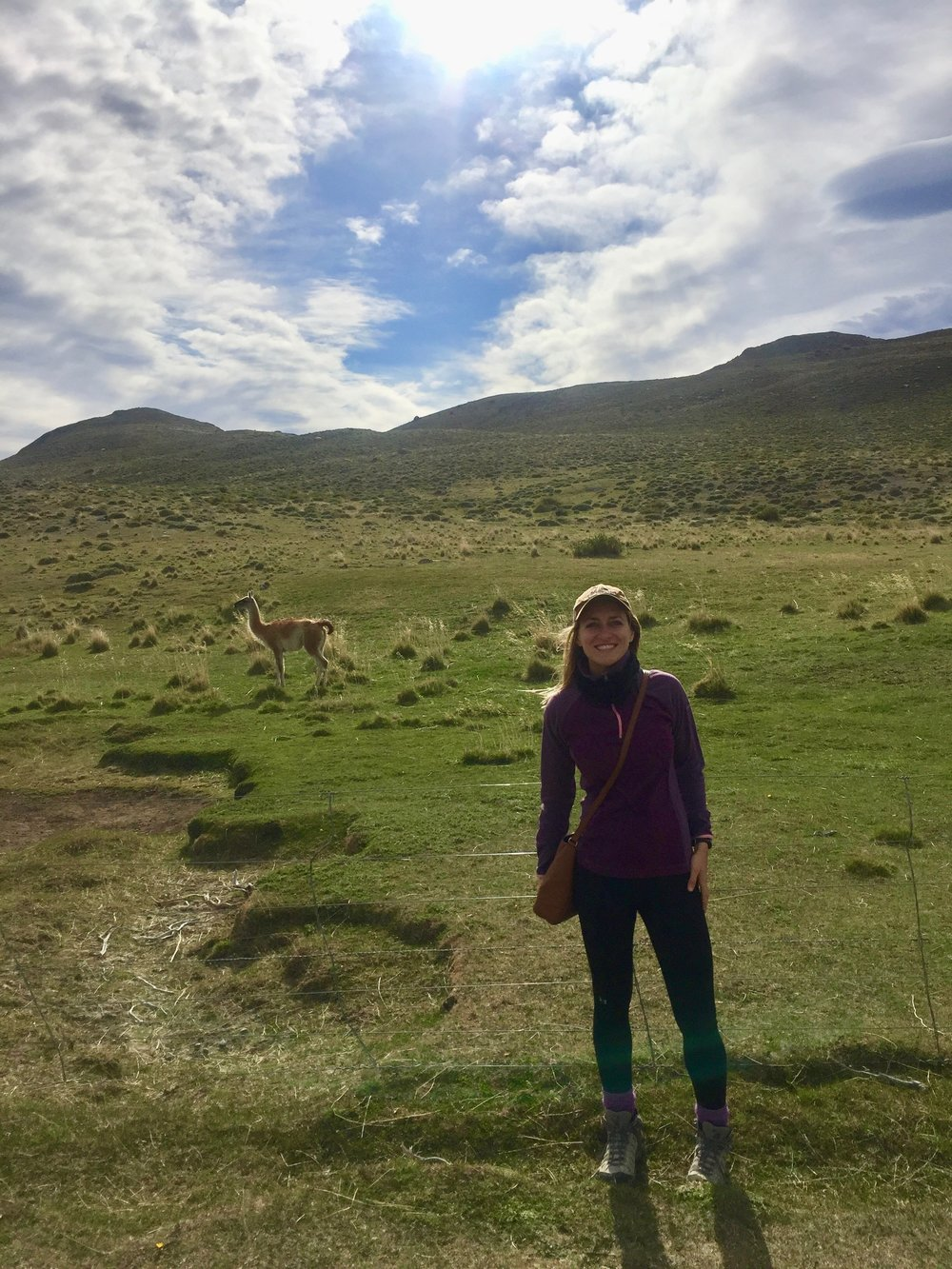 Took the opportunity to photobomb a guanaco before leaving Chile.