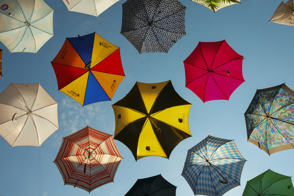 Umbrella_Art_Print_2.jpg