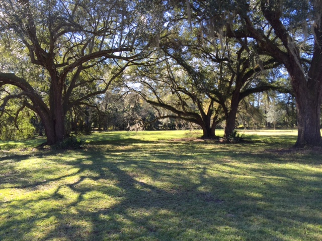 Kensington Plantation Wedding
