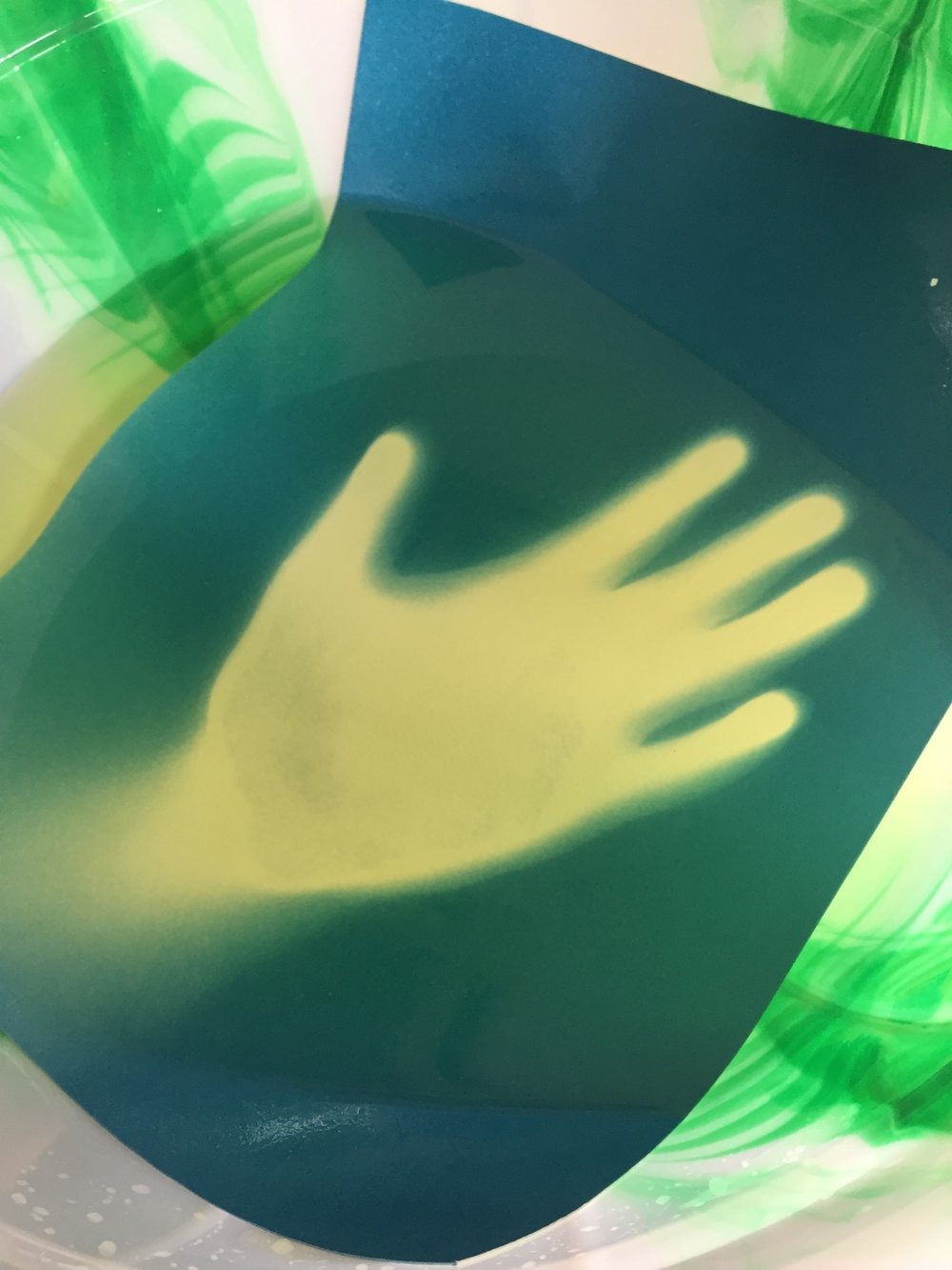 A hand print cyanotype is rinsed in a bowl of water, allowing the image to become fixed and permanent.